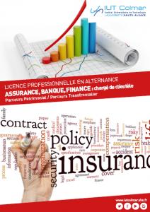 Plaquette de la LP Assurance, banque, finance : Chargé de clientèle - Patrimonial
