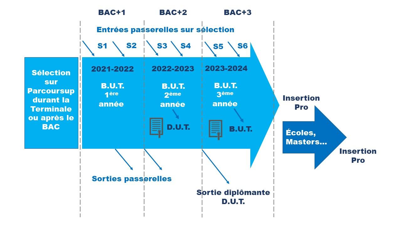 Schéma B.U.T.